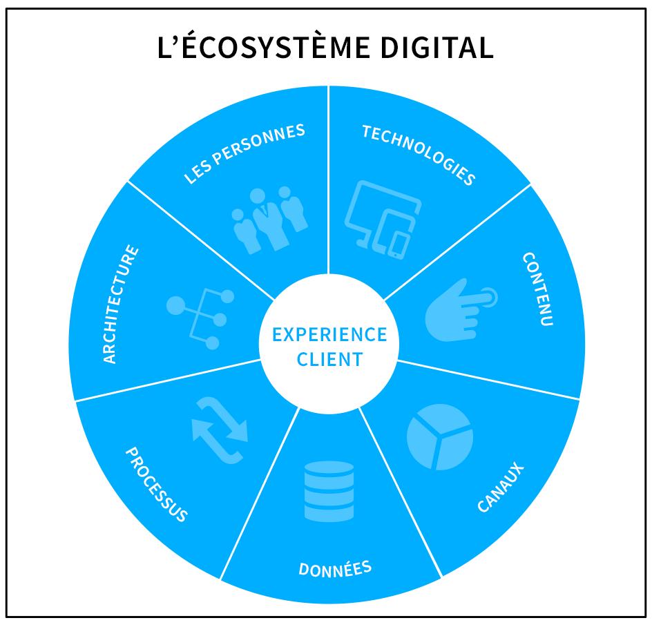 écosystème digita
