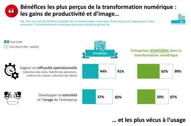Transformaiton digitale by opinionway